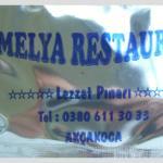 Kamelya Restaurant resmi