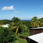 """jardin depuis la terrasse de """"Tobago"""""""
