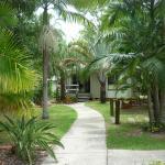 Gardens/Paths to Individual Villas