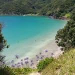 Foto de Russell --Orongo Bay Holiday Park