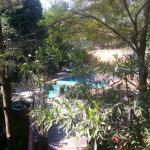 View from dining room to the pool