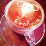 ภาพถ่ายของ Elephant