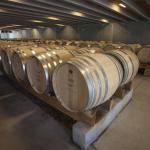 Peregrine wine cellar Central Otago