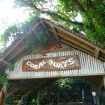 Foto de Coral Quays Fish & Dive Resort