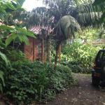 Our little bungalow in the rainforest