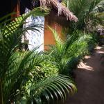 Foto di Madhu Coconut Beach Huts