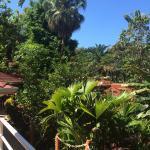 Foto de Hotel Villa Teca