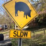 road sign~did not see any pigs