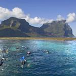 Snorkelling on the Lord Howe Lagoon (122263810)