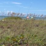 Sanibel Island Forty/Fifteen