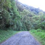 Mirador Trail