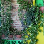 Wall inside Ritmos