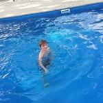 My son first in the new swimming pool