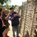 Выращивание тутового шелкопряда