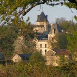 Chateau de Ternay Foto