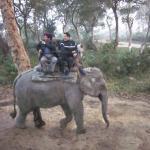Enjoy your elephant safari