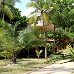 View of Shiva's Beach Resort from Garden