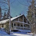 """My cabin -""""Robin's Nest"""""""