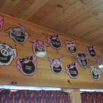 Our funny pig slogans