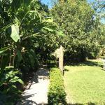 Detalle del jardin