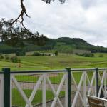 View from the deck of the Golf Club