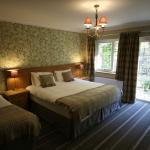 Newly Refurbished Dog Friendly Rooms at The Mary Mount Hotel