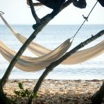 hammocks on the calm private beach