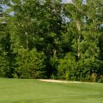 Chestatee Golf Club Foto