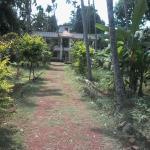 la maison de v arkala