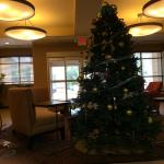 Photo of Homewood Suites Tampa Brandon