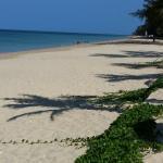 Strand gegen 10 Uhr vor dem Resort