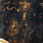 Petroglyph - hunting