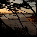 carmel beach, 2 min walk from room