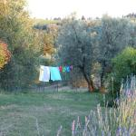 Foto de Le Spugne in Val di Botte