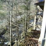 Roaring Form Creek, taken from upper floors