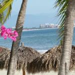The palapas on the beach with a view of Puerto Vallarta in the distance