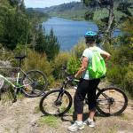 On the Waikato River Trail