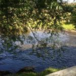 Lovely coffee beside the creek