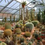 Jurassica Jardin Botanique