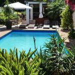 Pool/Garten
