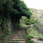Sentiero che porta alla chiesa