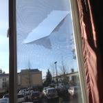 вид из окна - порванная москитная сетка