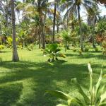 Foto de Villa Guaiamu Hotel