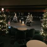 Lovely Christmas in the Lounge & Garden