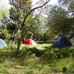 Camping de l'auberge de jeunesse de Nîmes