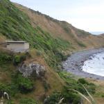 Aus dieser Beobachtungshütte kann man am Strand Pinguine sehen