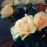 Fresh beautiful flowers