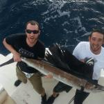 Sailfish - Ocean Breeze Sportfishing Boca Raton