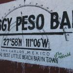 Soggy Peso Bar