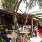 Lovely backyard Olive Garden